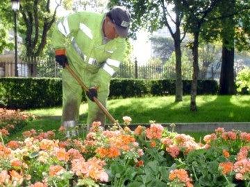 Imagen de archivo de un jardinero