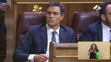 Pedro Sánchez persigue a la abeja Maya en busca de un Congreso multicolor