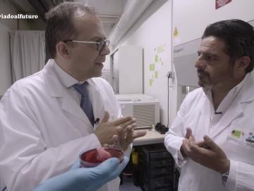 """Impresión de órganos 3D, """"un cambio que revolucionará los quirófanos del futuro"""""""