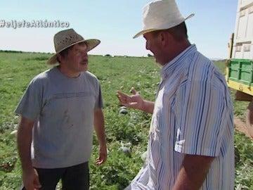 El Jefe Infiltrado de Kiwi Atlántico y Javier