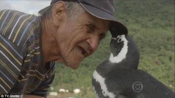 Joao y su amigo pingüino