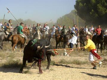 Tordesillas sustituye el Toro de la Vega por el Toro de la Peña, un desencierro sin lidia ni muerte