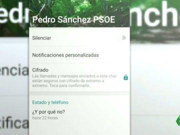 """Pedro Sánchez cambia su estado de Whatsapp a pocas horas de que empiecen las consultas: """"¿Y por qué no?"""""""