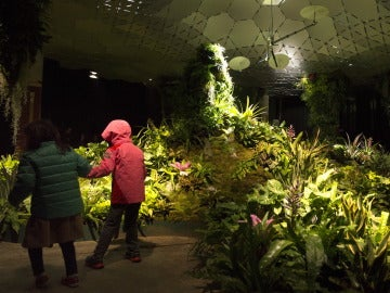 Lowline Lab, parque subterráneo piloto
