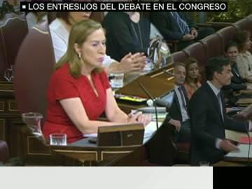 El rifirrafe entre Sánchez y Ana Pastor o los aplausos de Iglesias al socialista, lo que no se vio de la investidura