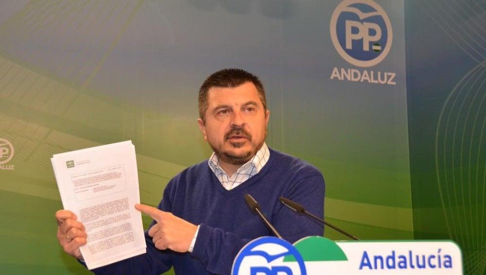 Toni Martín Iglesias, político del PP andaluz