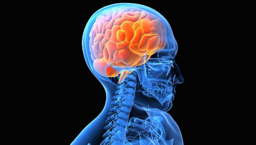 El botón de compra del cerebro