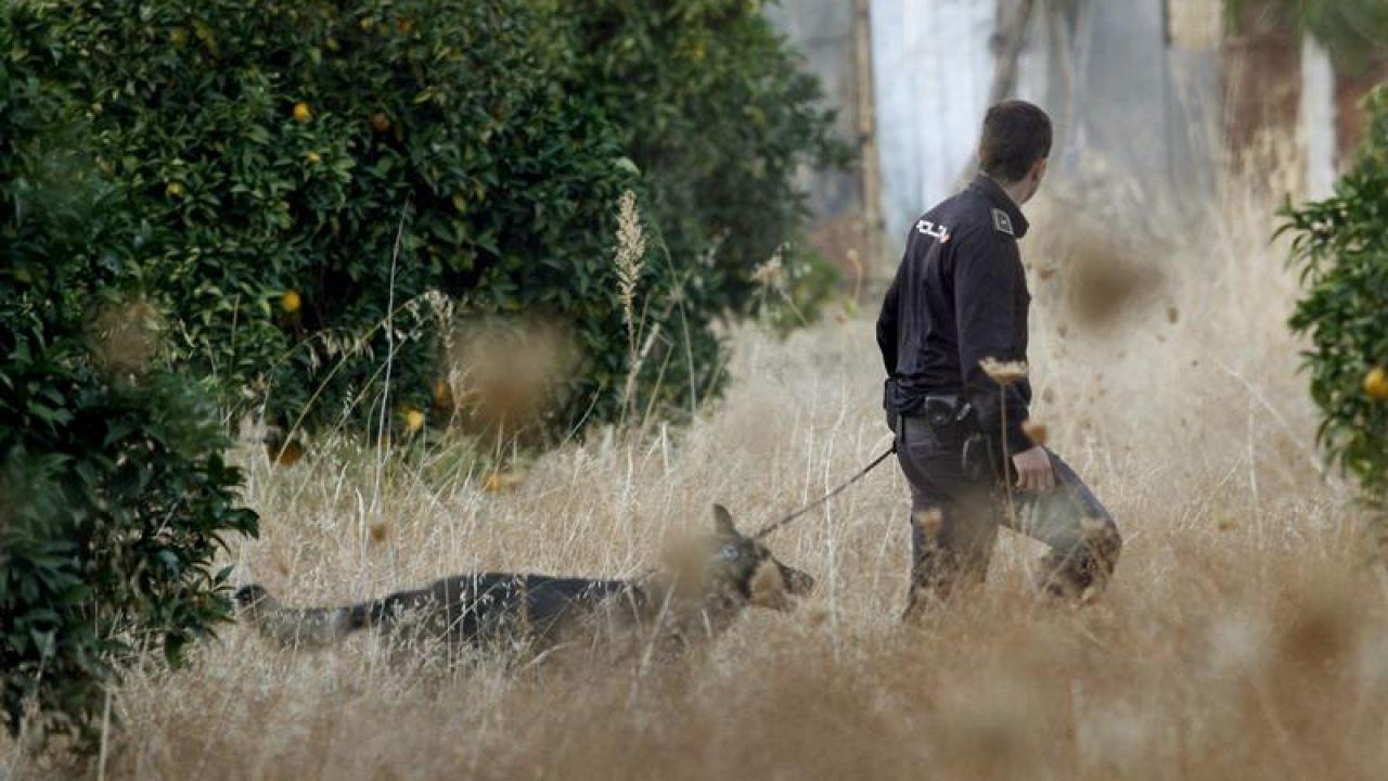 Un agente con un perro de la unidad canina de la Policía Nacional