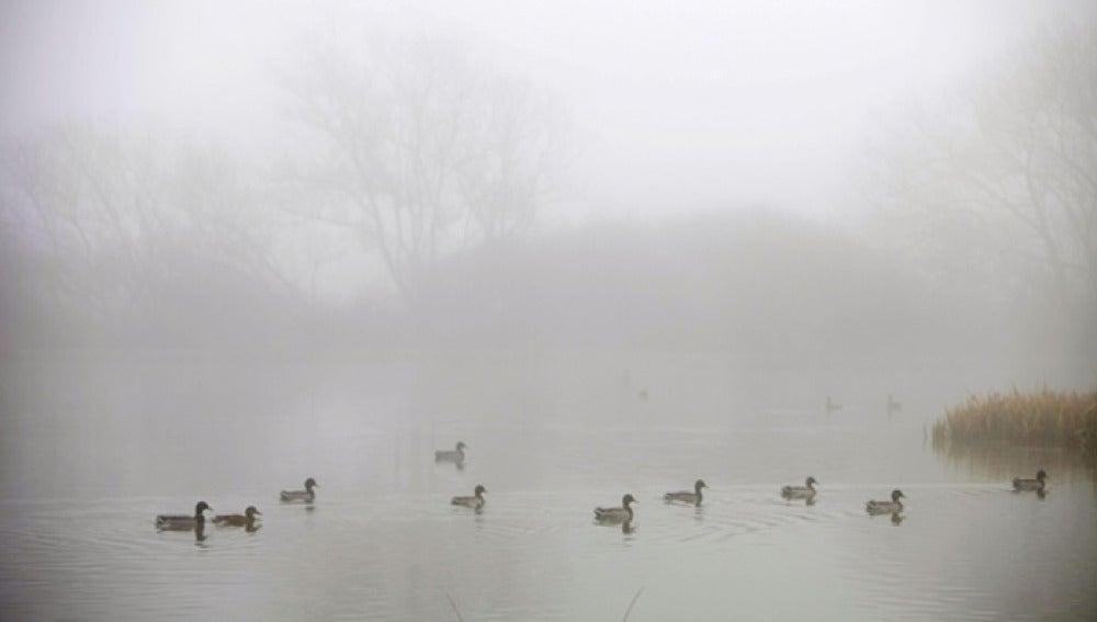 La niebla cubre España