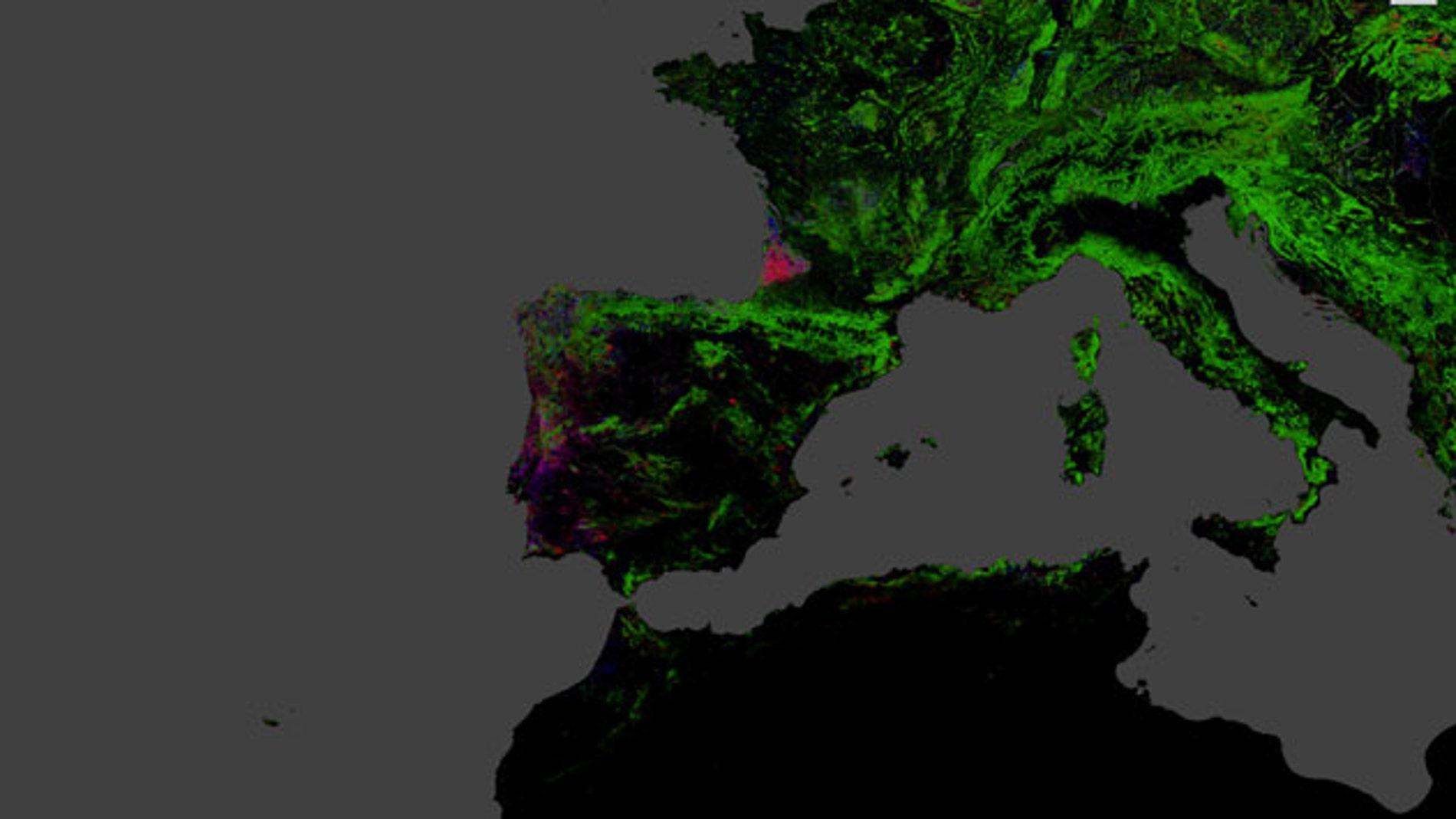 Mapa Interactivo Incendios