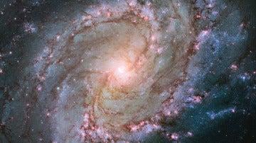 Imagen de la galaxia Messier 83 conocida como galaxia del molinillo austral, sede de un gran número de explosiones de supernovas y que, además, parece tener un doble núcleo