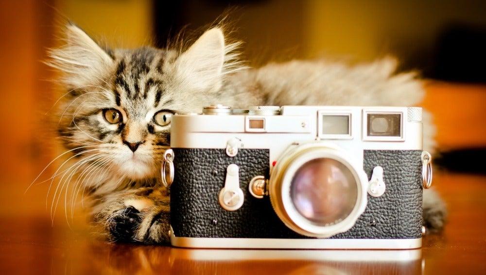 La autoedición cultural llega a la fotografía