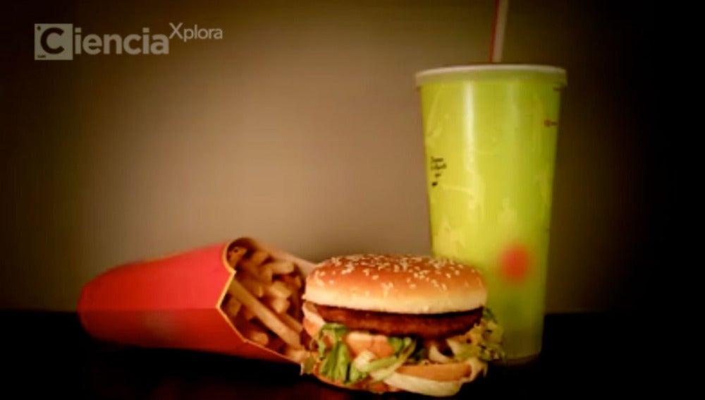 Comida Basura | CienciaXplora