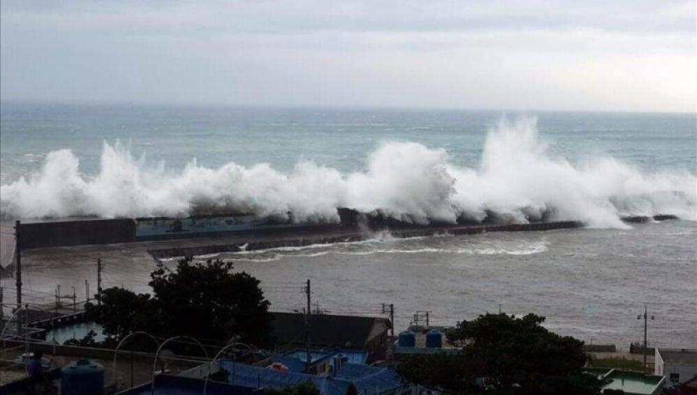tifón 'Neoguri'