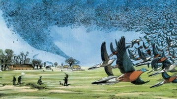 Recreación de una bandada de palomas migratorias