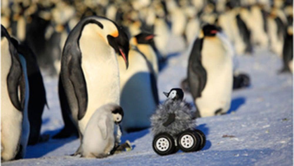 Pingüino robot en la Antártida