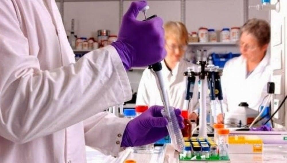 Imagen de archivo de una investigación para un tratamiento contra el cáncer