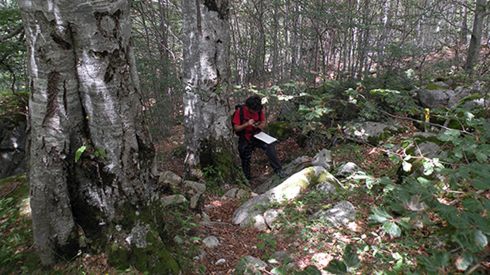 Los ecólogos debe afrontar 13 retos para