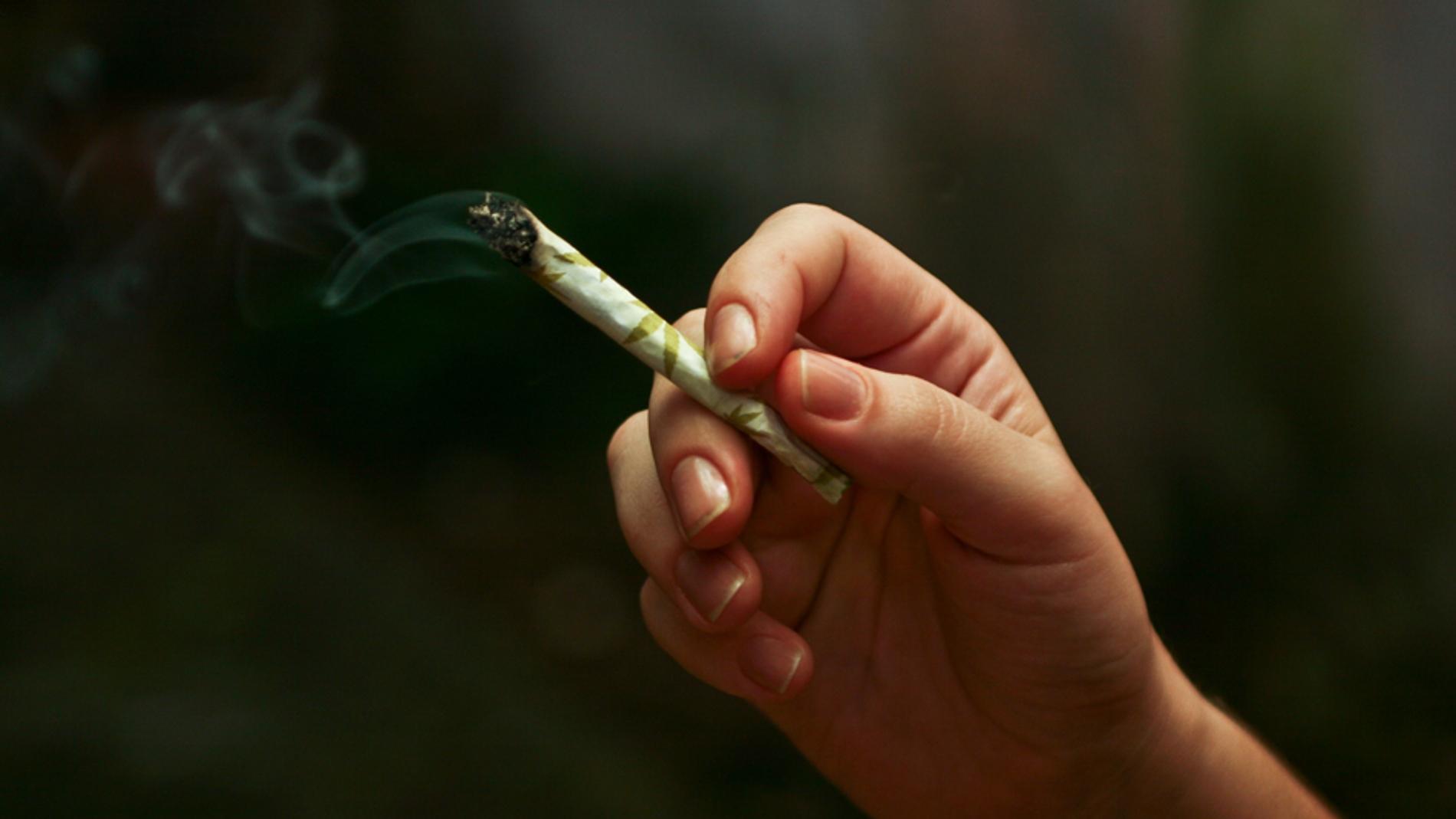 Una persona sujeta un cigarrillo de cann