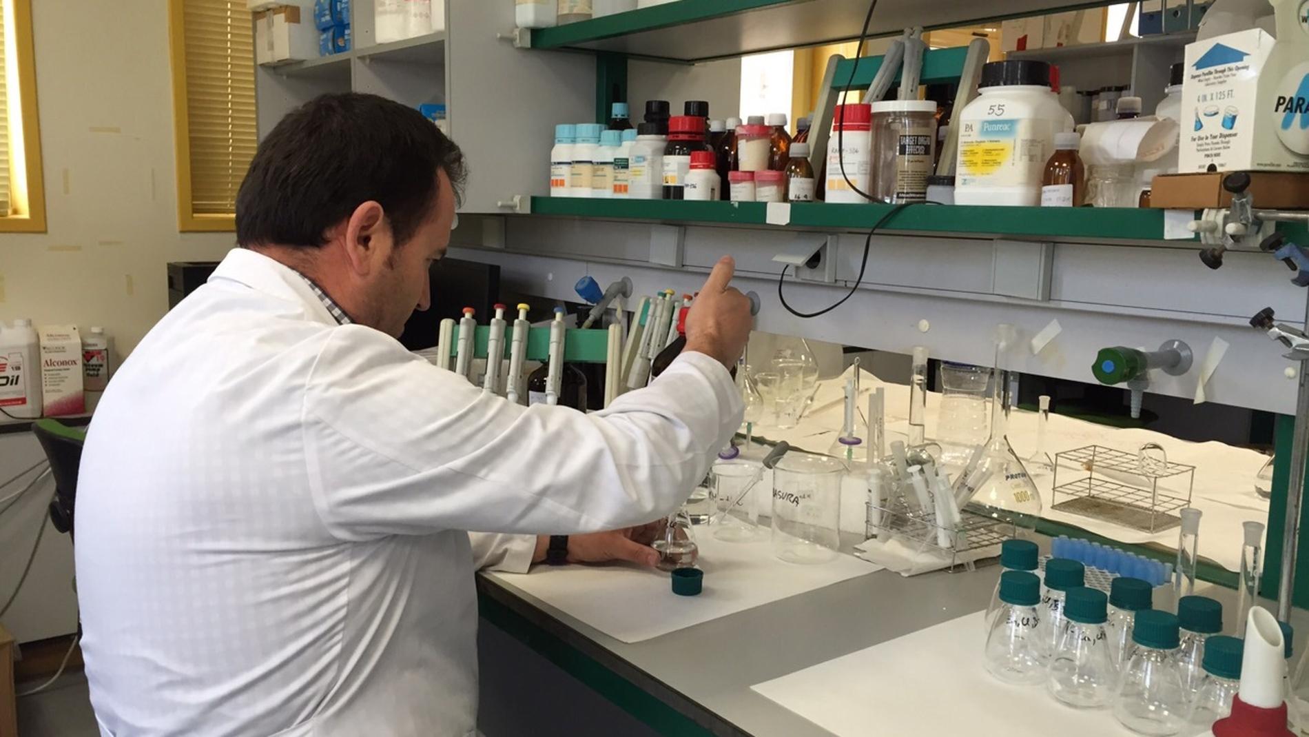 Ensayos en el laboratorio / Fundación De