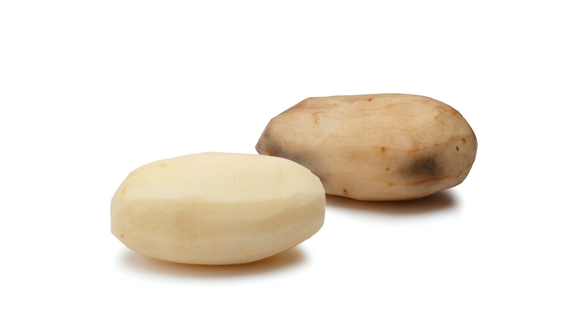 Una patata transgénica contra otra que no