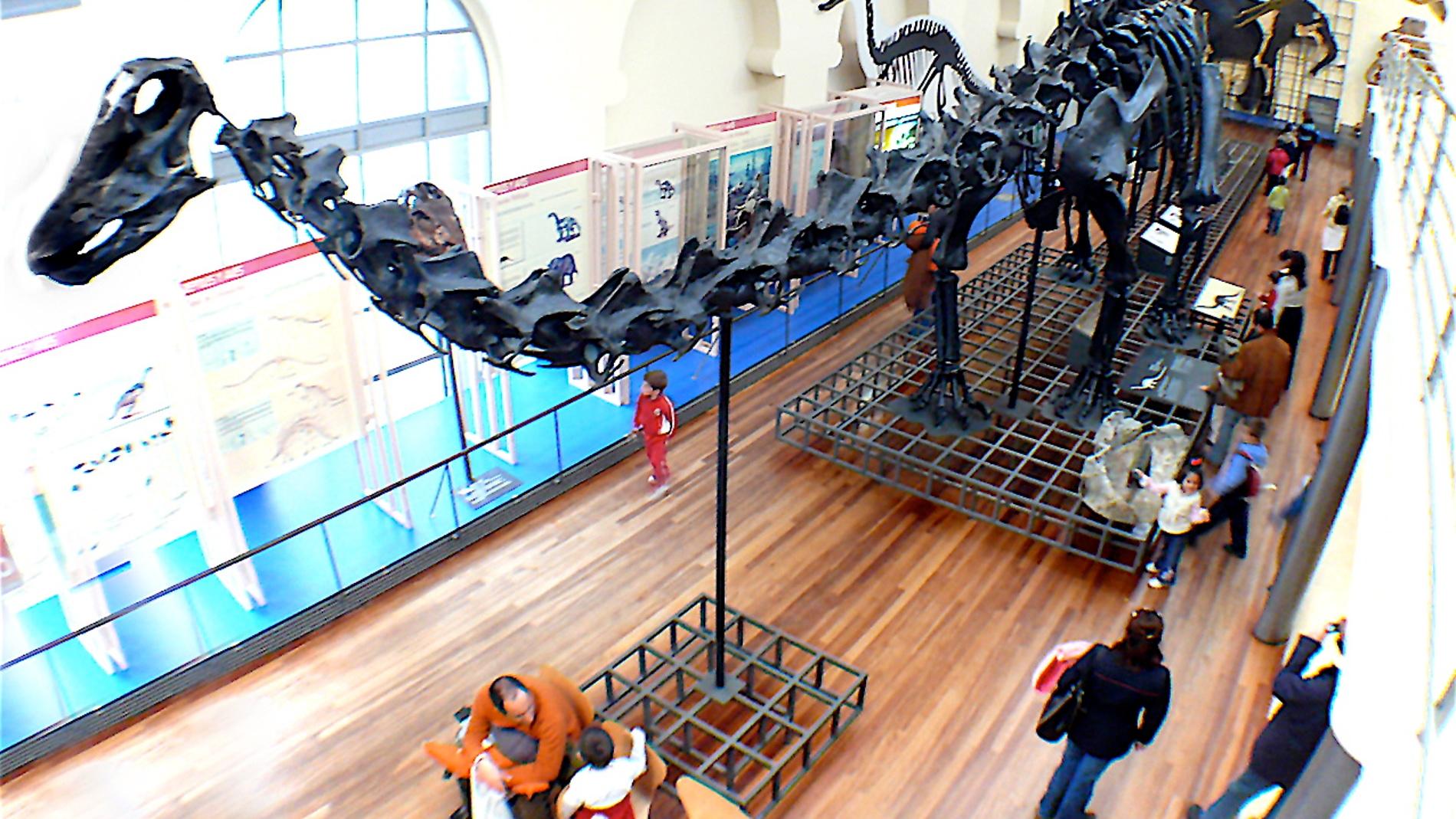 Museo Nacional de Ciencias Naturales de Madrid