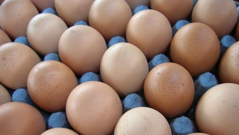 Varias docenas de huevos