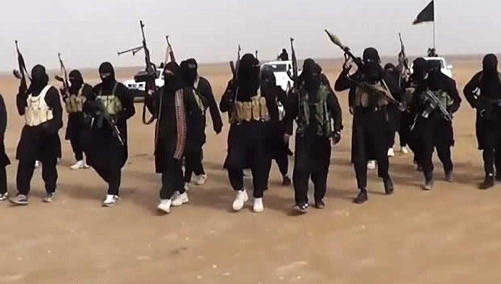 Miembros de Daesh