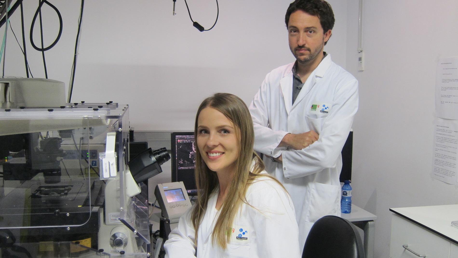 En el laboratorio del IBEC