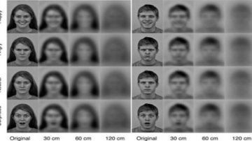 Los recién nacidos distinguen rostros a treinta centímetros de distancia