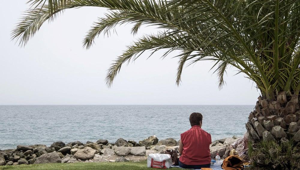 Una mujer sentada frente al mar debajo de una palmera