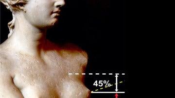 Los parámetros de la teta ideal según el cirujano Olivier Branford