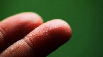 Las huellas dactilares son nuestra identificación más fiable