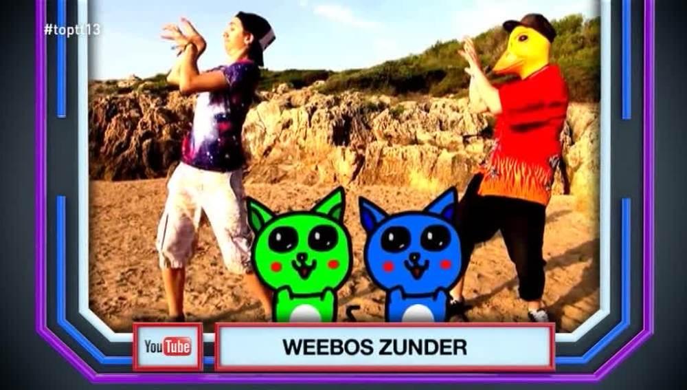 Weebos Zunder es 'El Temazo' con una canción sobre gatos