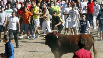 Participantes en el encierro del torneo del Toro de la Vega en 2014