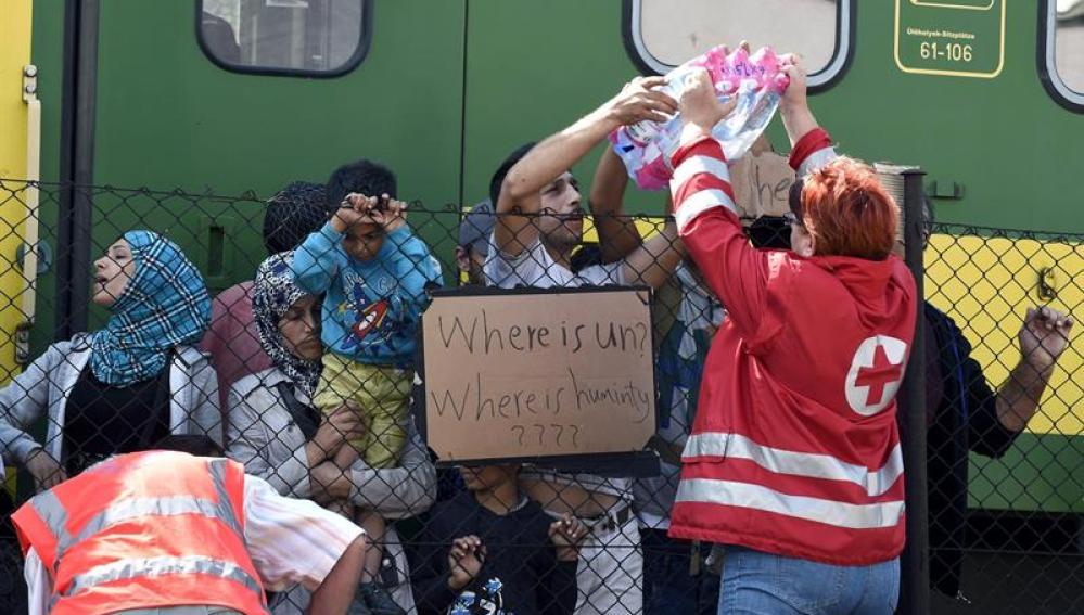 Miembros de la Cruz Roja reparten botellas de agua a los refugiados