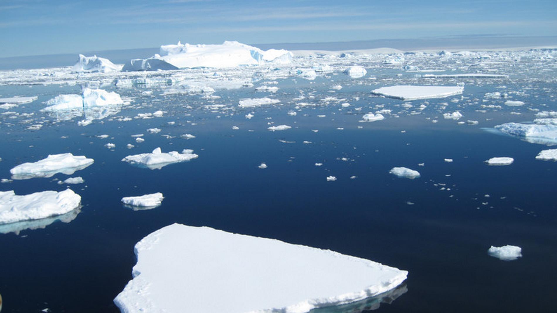 Icebergs flotando en el océano Antártico
