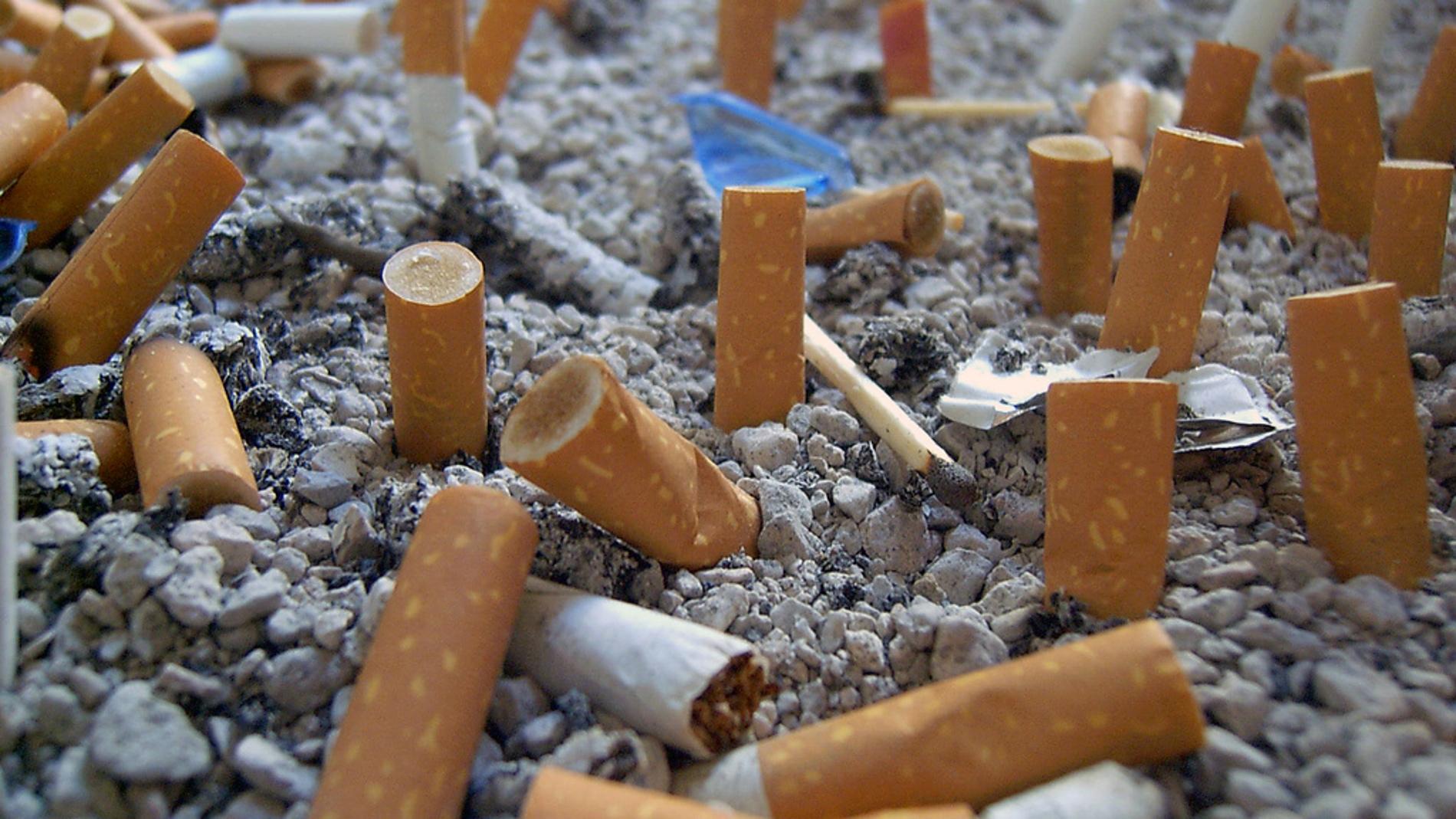 Imagen de un cenicero con multitud de cigarros apagados