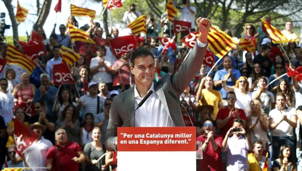 El secretario general del PSOE, Pedro Sánchez, durante su intervención en la Fiesta de la Rosa en la Pineda