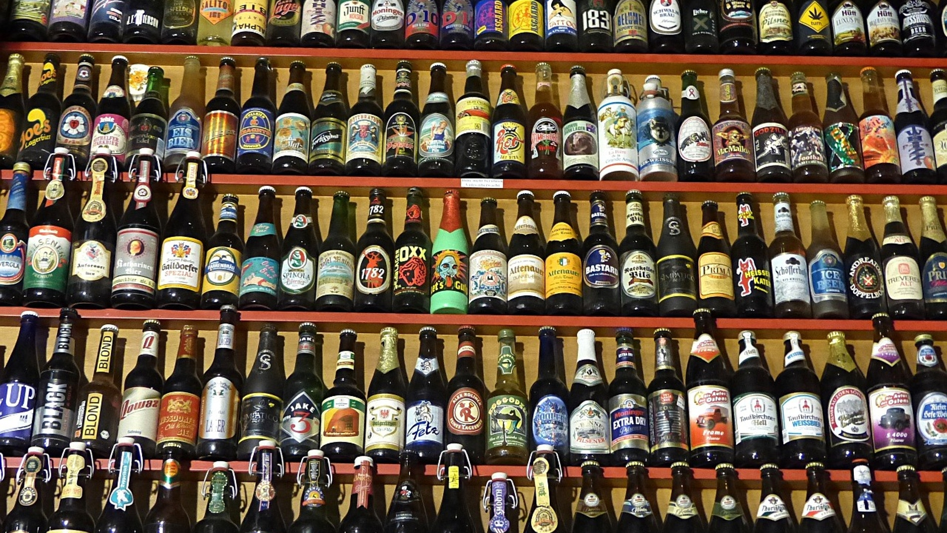Distintas cervezas envasadas