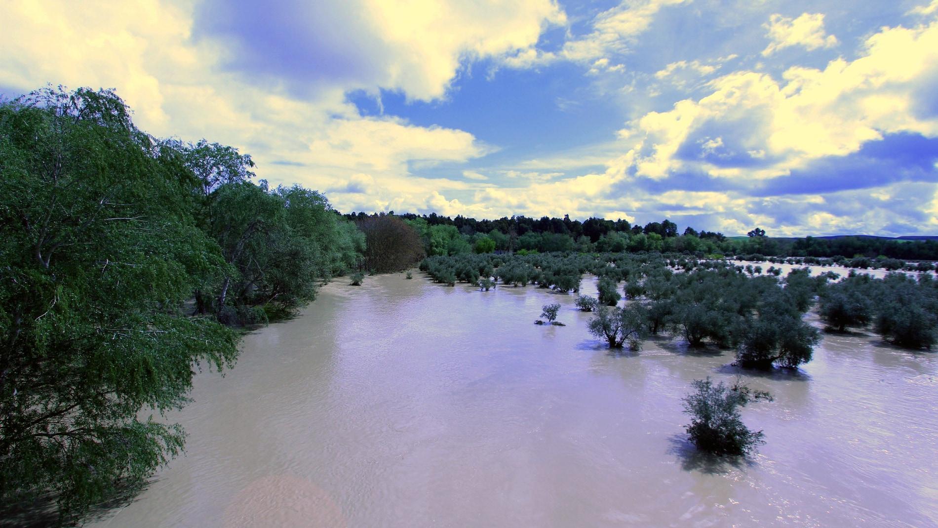 Río Guadalquivir en una zona cercana a V