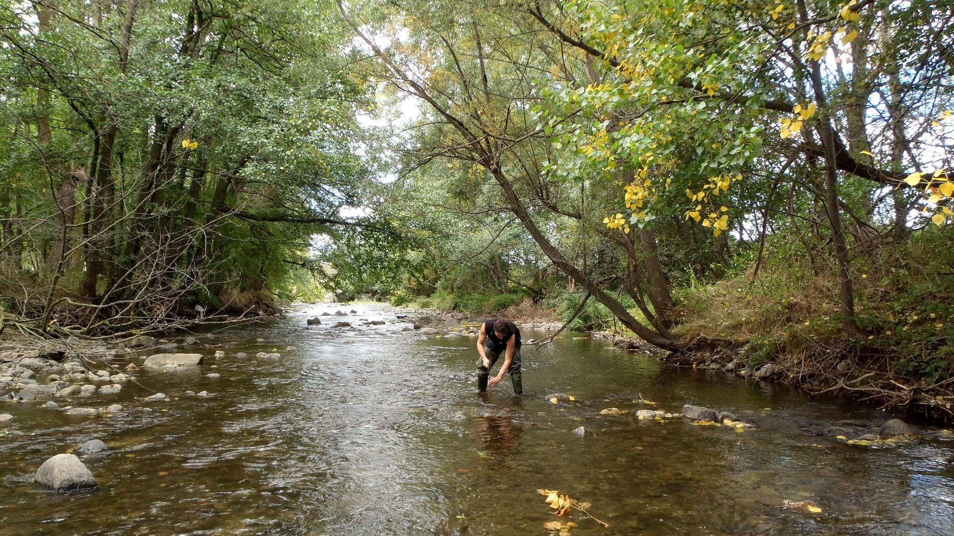 El investigador Ibon Aristi en el río Se