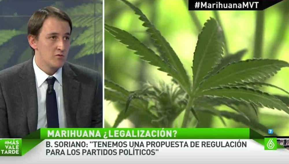 Bernardo Soriano, sobre la regulación de la marihuana