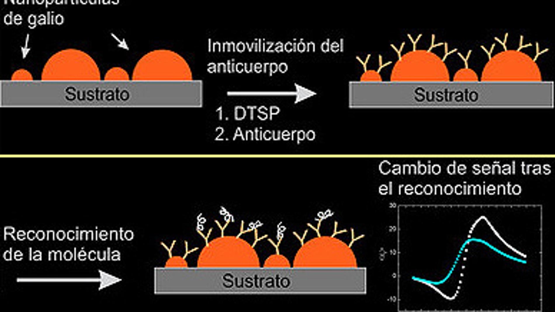 Nanopartículas de Galio sobre Silicio: u