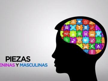 El cerebro de los hombres tiene un lado femenino