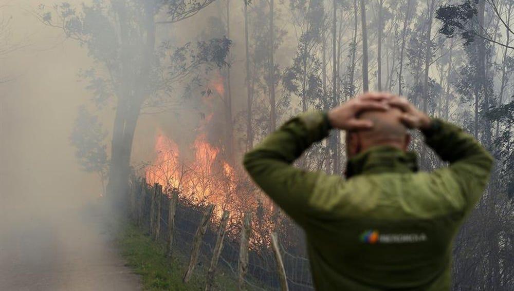 Una persona se lleva las manos a la cabeza mientras presencia un incendio en Cantabria
