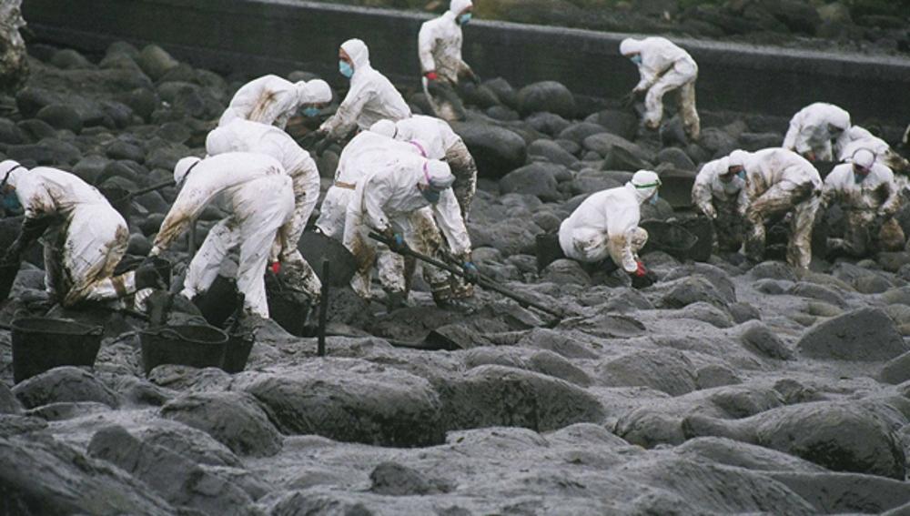 Voluntarios limpiando fuel del Prestige
