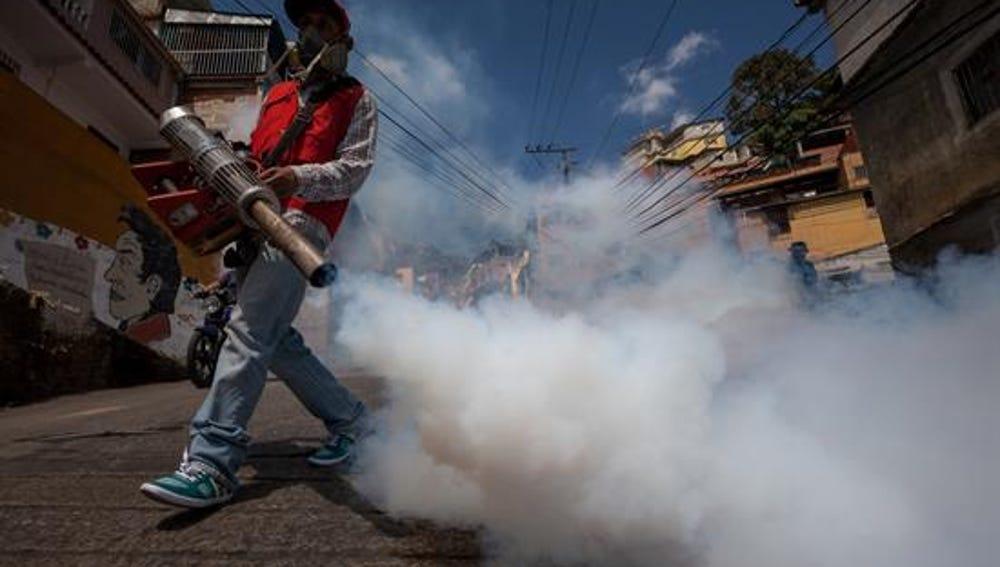 La OMS alerta por el virus Zika