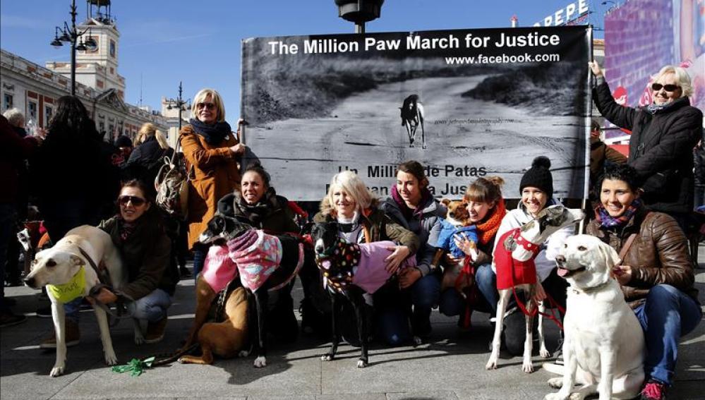 Cientos de personas y sus galgos se concentran en la Puerta del Sol para pedir el fin de caza perros