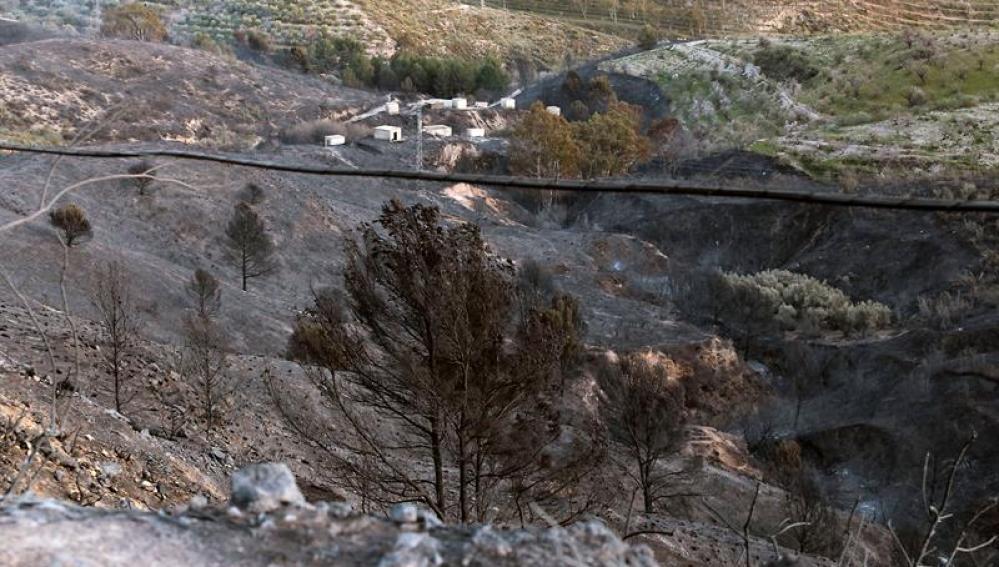 Restos del incendio de Lanjarón